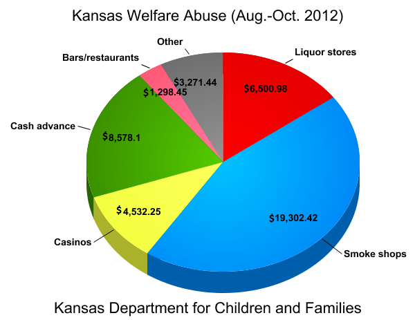 is america's welfare system being abused Hello everyone the american welfare system is being abused the original purpose of welfare has been lost in translation, and far too many citizens of the country.