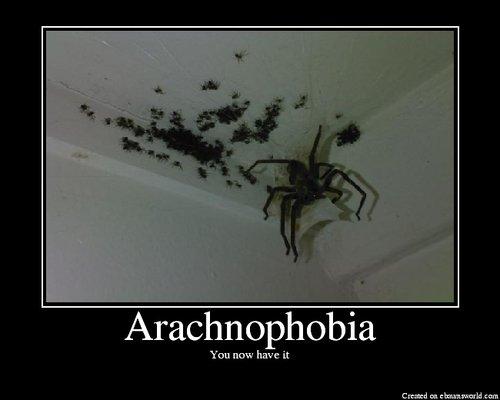 Arachnophobia.png