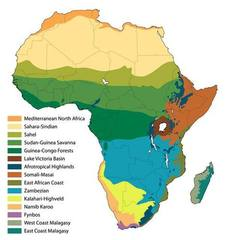 map-Africa-biomes-with-countries%20birds.jpg